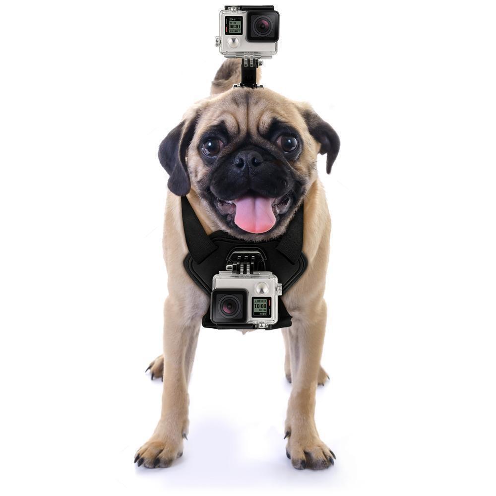 دوربین ورزشی یا اکشن کمرا چیست؟